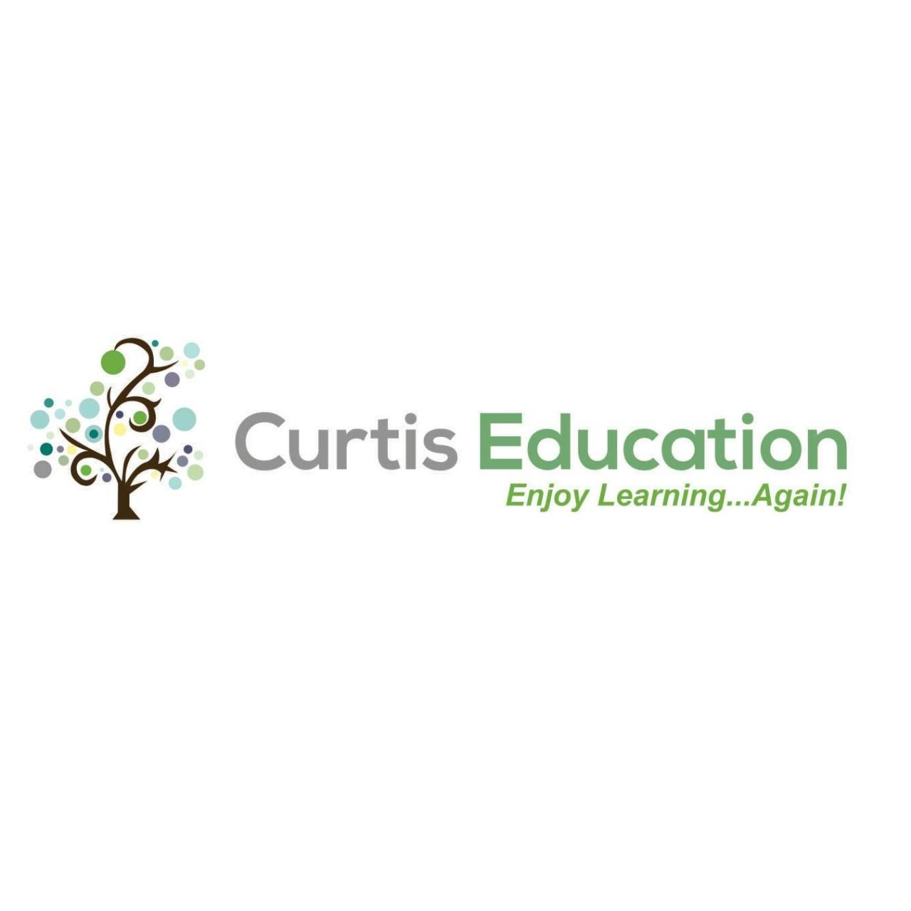 Curtis Education