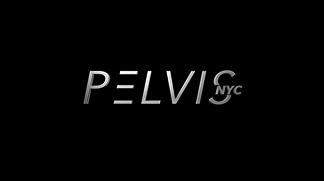 Pelvis NYC - Dr. Adam Gvili PT, DPT
