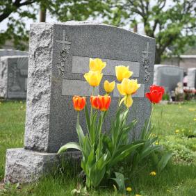 Carter Funeral Home - Denbigh Chapel