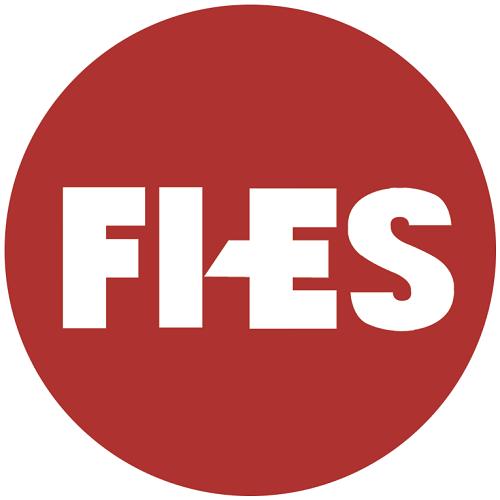 FI-ES Systems Pvt Ltd
