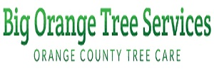 Big Orange Tree Services