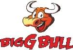 Biggbull Industries Limited