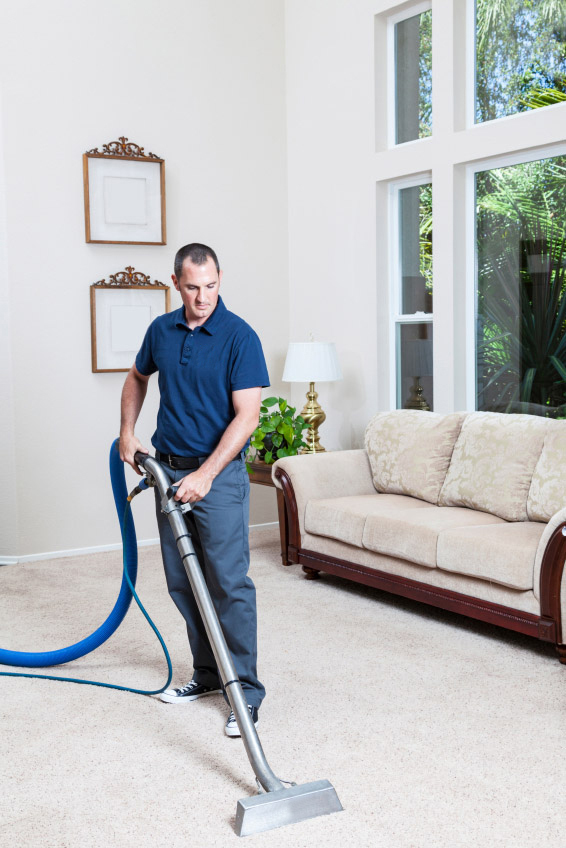 Carpet Cleaning Spring