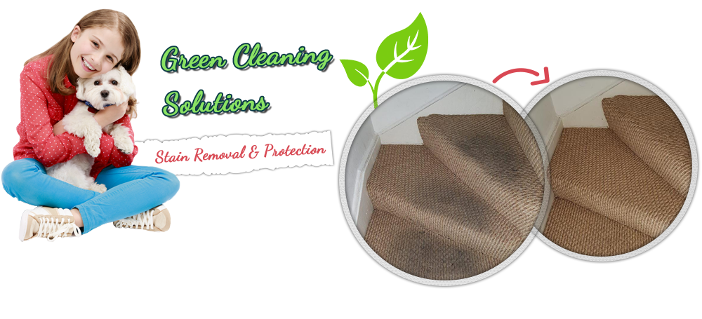Carpet Cleaning Service Fresno Texas