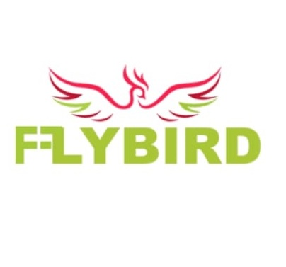 Fly Bird Taxis
