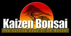 Kaizen Bonsai