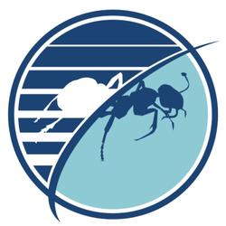 Budget Pest Control, Inc.