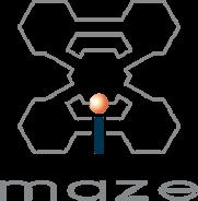Maze Training