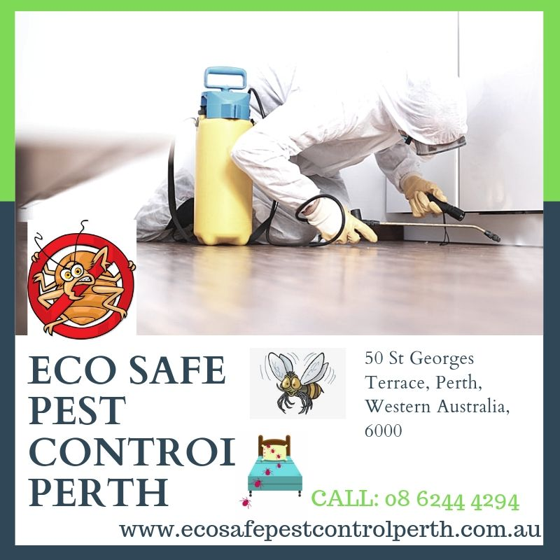 Eco Safe Pest Control Perth