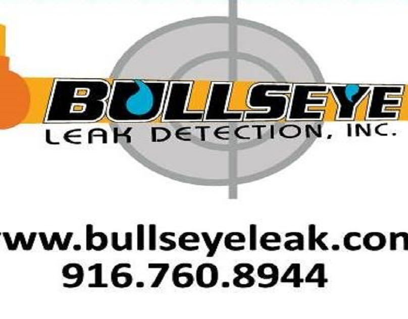 bullseyeleak