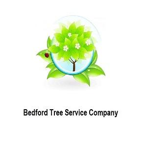 Bedford Tree Service Company