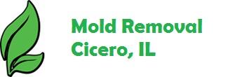 Mold Removal Cicero