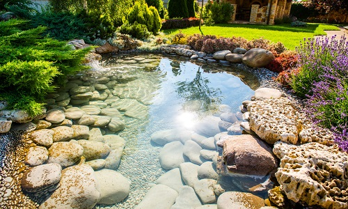 Long Beach Landscape Design
