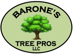 Barones Tree Pros LLC