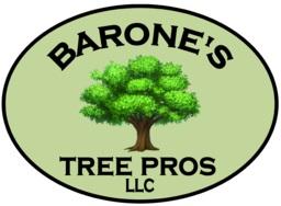 Barones Tree Pros LLC