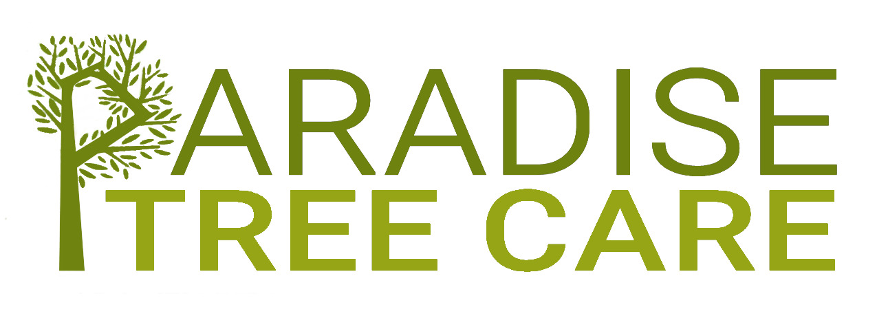 Paradise Tree Surgeons and Landscaping