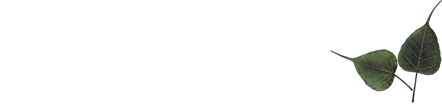 CMTC Architect Inc.