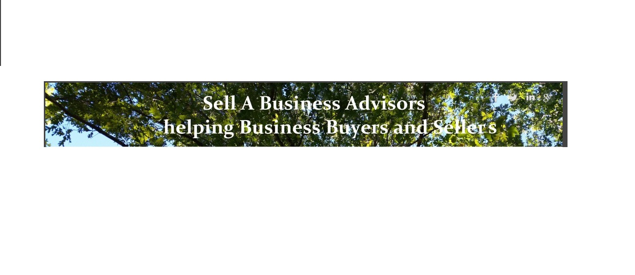 sellbusinessadvisors01