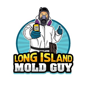 Long Island Mold Guy