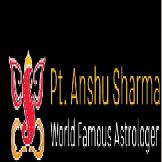 Best Vashikaran Specialist Astrologer Anshu Sharma