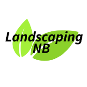 New Braunfels Landscaping