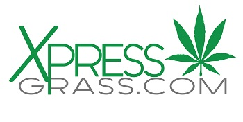 Xpress Grass