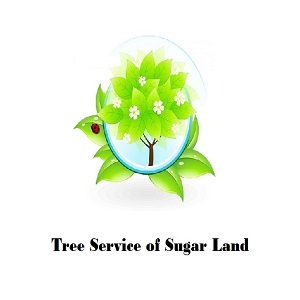 Tree Service of Sugar Land