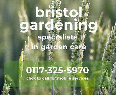 Bristol Gardening