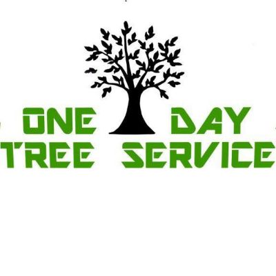 One Day Tree Service
