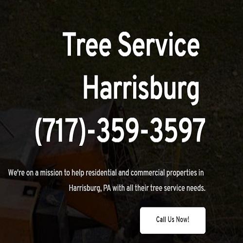 Tree Service Harrisburg