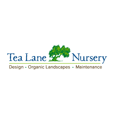 Tea Lane Nursery