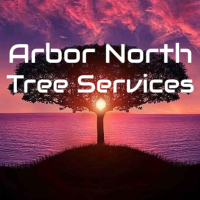 Arbor North Tree Services