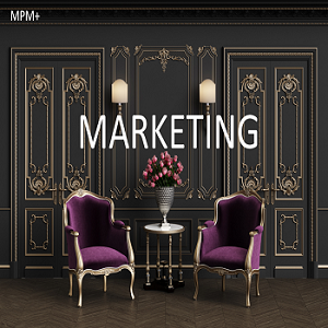 More Profitable Marketing (MPM+)
