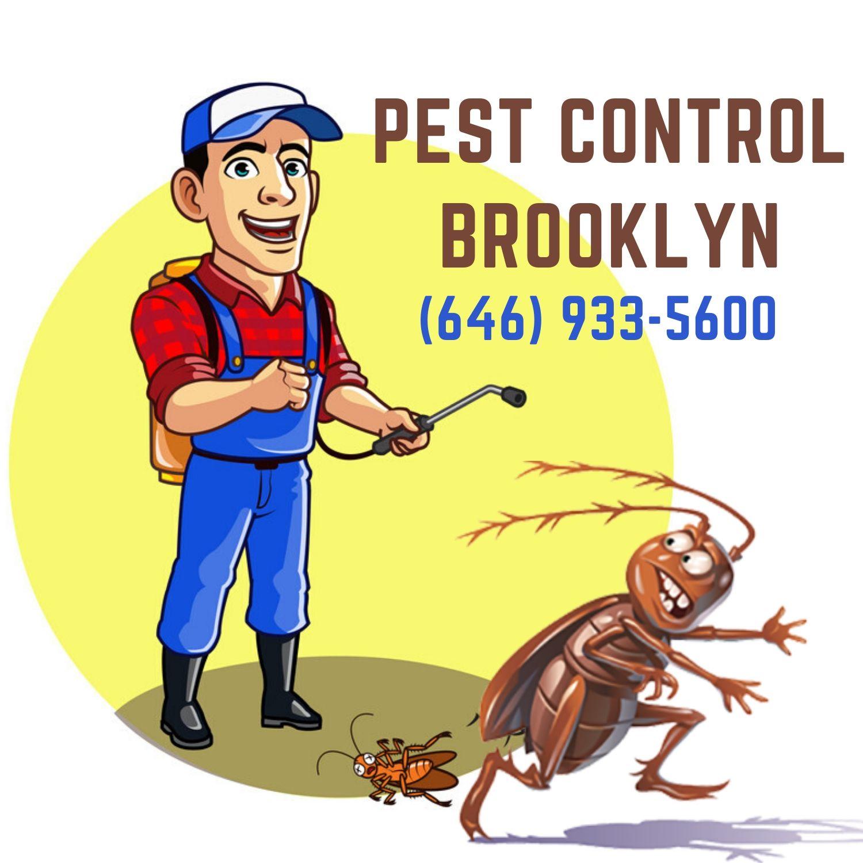 Pest Control Brooklyn
