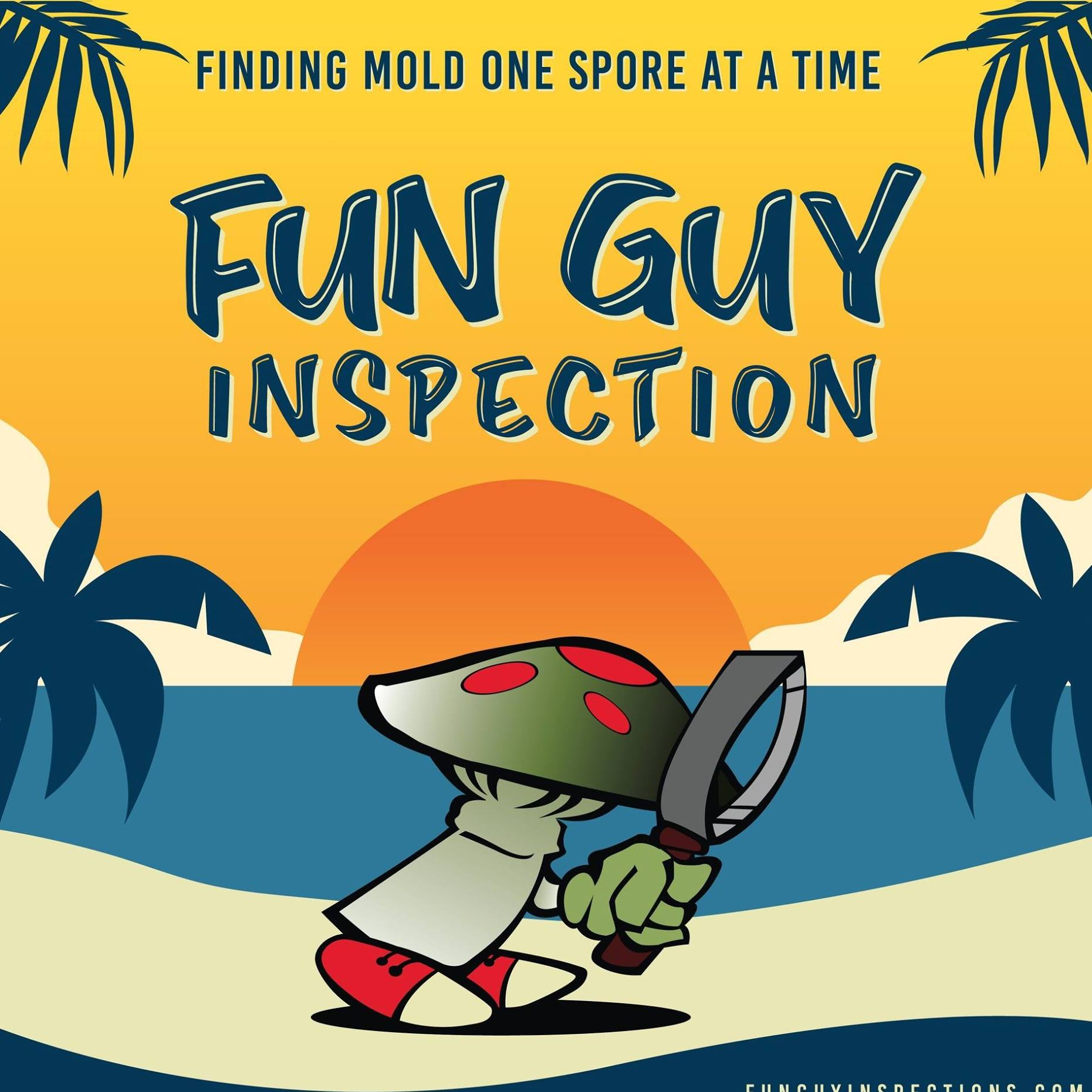 Fun Guy Inspection & Consulting Inc.