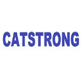 Catstrong Mold Inspection and Removal Houston
