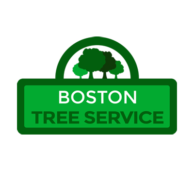 Boston Tree Service