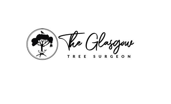 Timber Tree Surgeons Glasgow