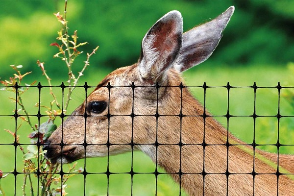 Deer Fence USA