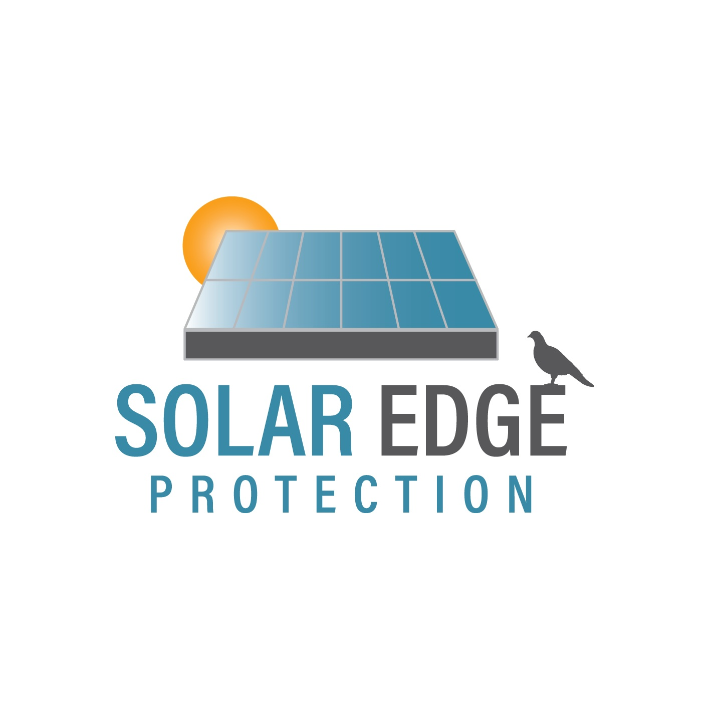 Solar Edge Protection Glasgow (Solar Panel Bird Proofing)