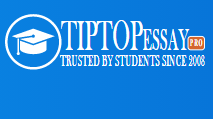 TIPTOP Essay