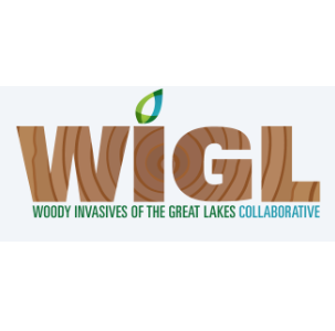 Woody Invasives Great Lakes