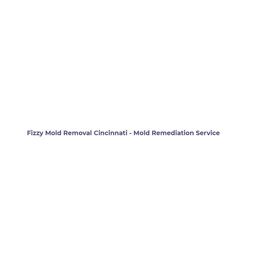 Fizzy Mold Removal Cincinnati - Mold Remediation Service