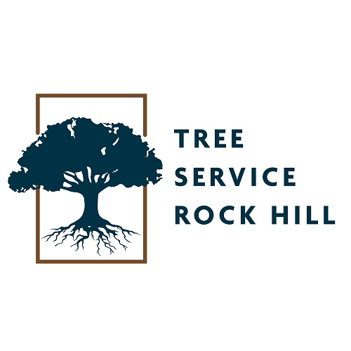 Tree Service Rock Hill