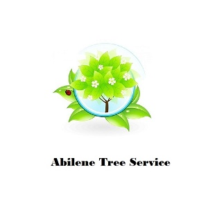Abilene Tree Service