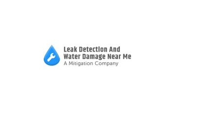 Leak Detection And Water Damage Near Me