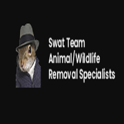 SWAT TEAM Animal Pest Control