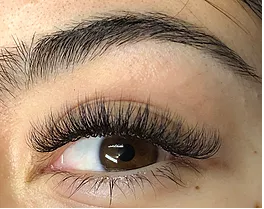 Ink Lash and Brow