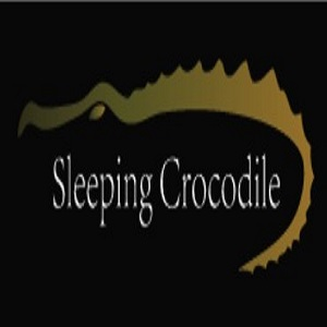 Sleeping Crocodile Inc.