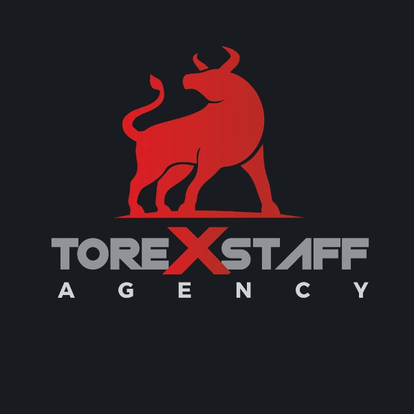 Torexstaff Ltd - Recruitment Agency Hull Yorkshire